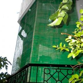 бамбуковые жалюзи на окнах